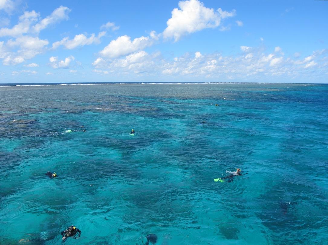 Quand aller à la barrière de corail ?