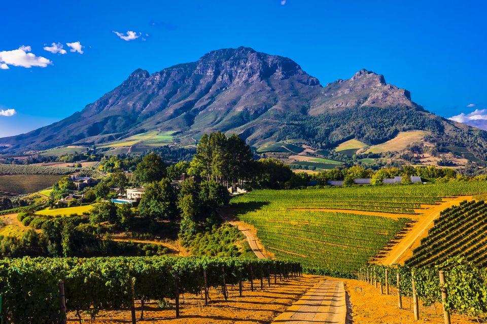 Séjour en Afrique du Sud : les monuments et les sites à ne pas rater