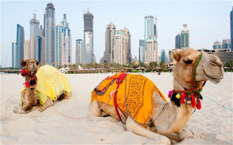 Visiter Dubaï : Que faire et quand partir ?