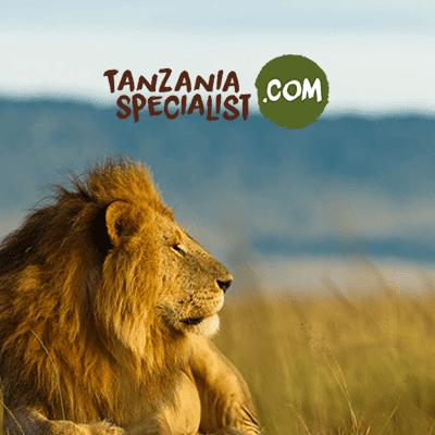 Est-ce dangereux d'aller en Tanzanie ?